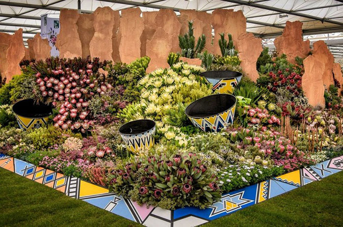 SA bags 37th gold medal at RHS Chelsea Flower Show