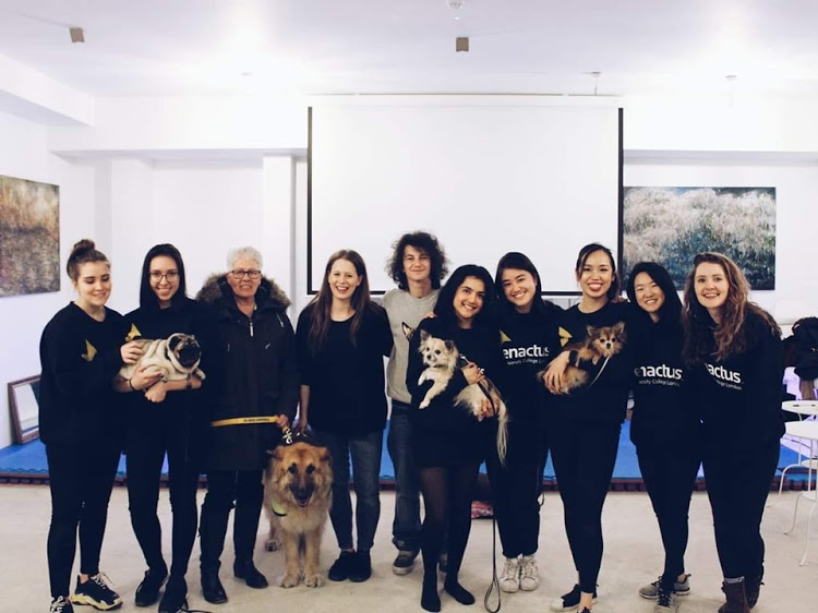 Dog-petting pop-up café to be found in London