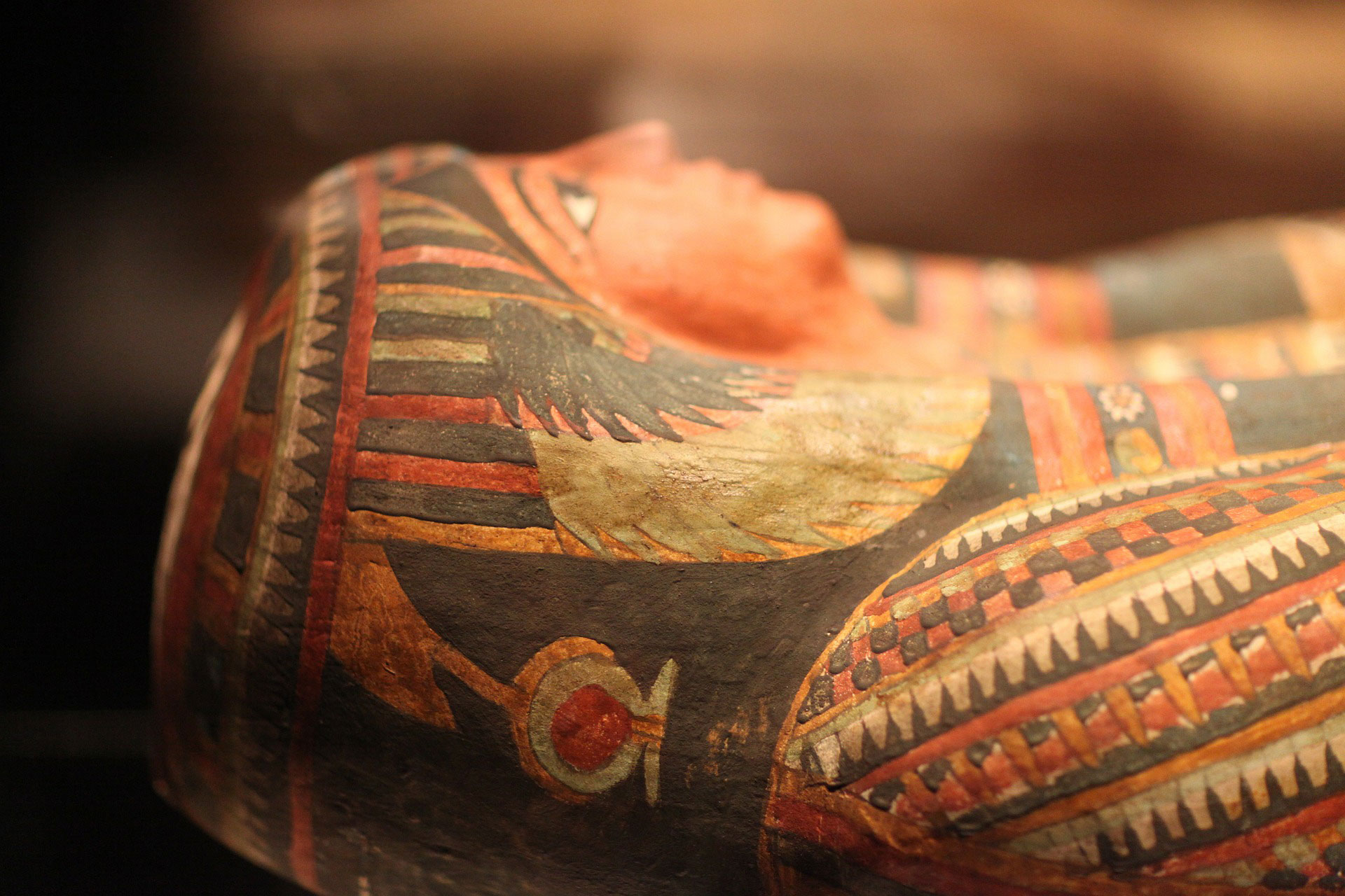 Archaeologists discover 30 ancient coffins in Egypt