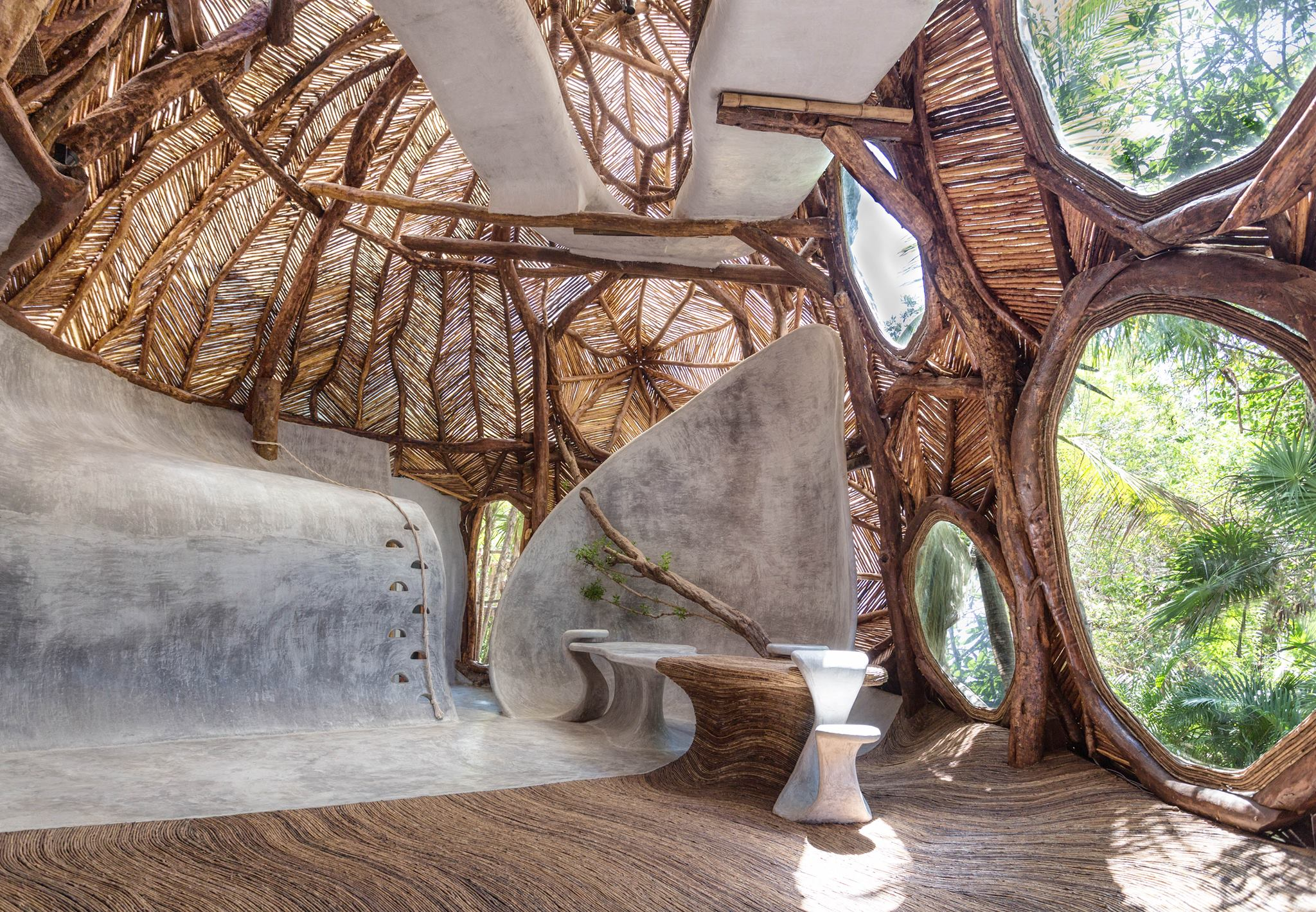 Mexico's art gallery in the trees