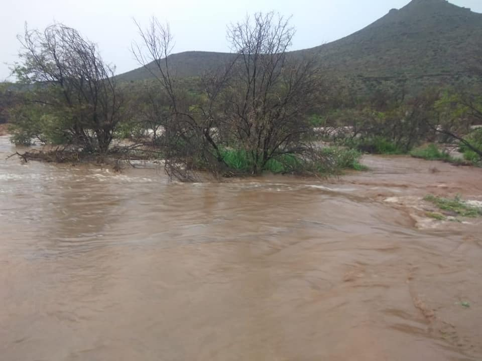 Karoo National Park receives much-needed rain