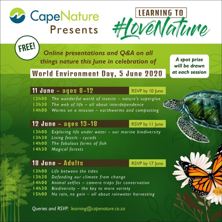 CapeNature 768x768 - CapeNature to host free online series for World Environment Day