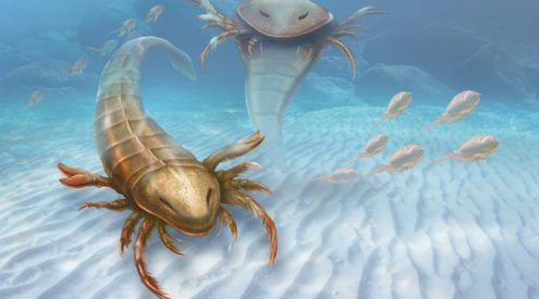 Giant sea scorpions once ruled the prehistoric ocean