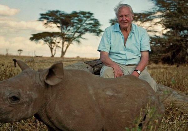 David Attenborough pleads to save the Zoological Society of London