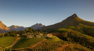 South African vineyard named in world's top 50