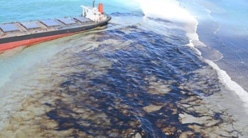 Mauritians band together to help clean oil spill