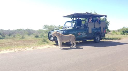 WIN: A 2 night trip for two to the Kruger National Park