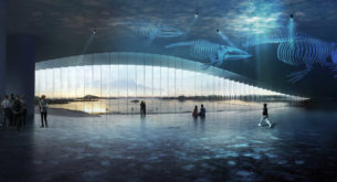 Inside the 'Whale Museum' opening in the Arctic Circle
