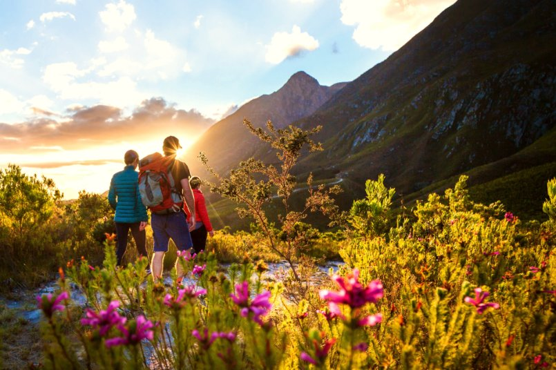 New by-laws released for City of Cape Town nature reserves