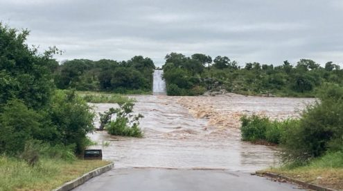 Tropical Storm Eloise leaves her mark on the Kruger National Park