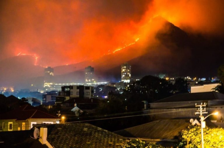 Table Mountain is on fire, be on the lookout for animals escaping the fire