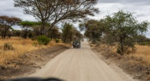 What you need to know before travelling from South Africa to Kenya